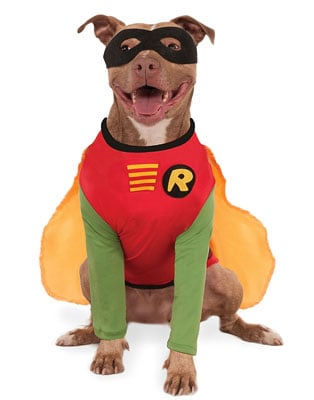 DC Comics Robin Big Dog Boutique