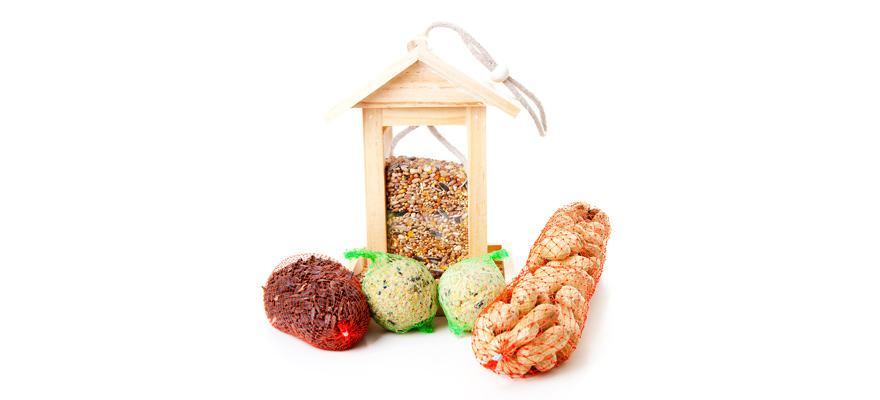 bird feeder with food