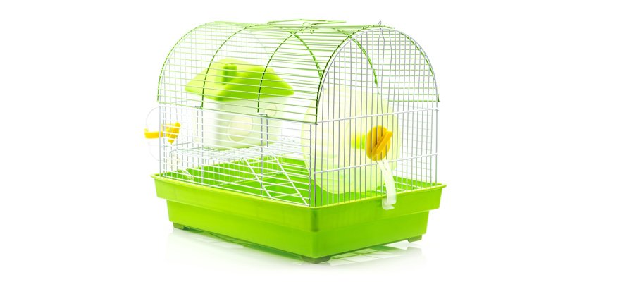 hamster cage green