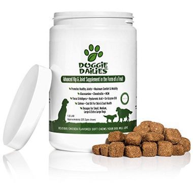 Advanced Hip & Joint Supplement for Dogs by Doggie Dailies