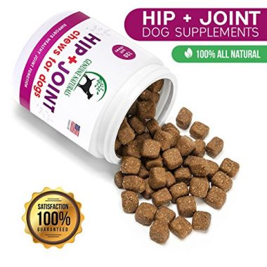 Genuine Naturals Joint Supplement Soft Chews