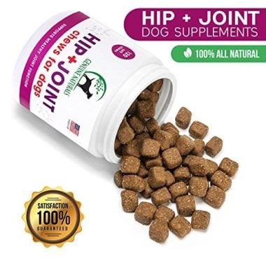 10 best dog joint supplements in 2018 review