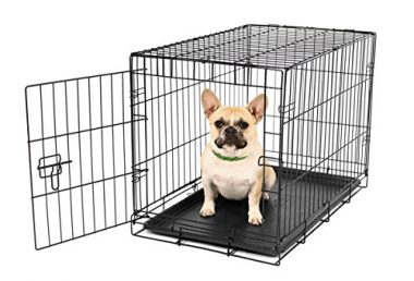 Secure and Compact Single Door Metal Dog Crate by Carlson Pet Products