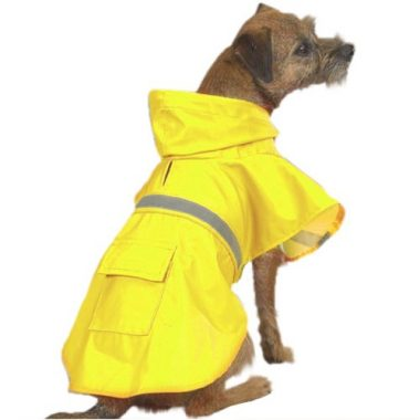 Dog Rain Coat by PetEdge Dealer Services