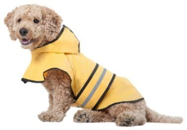 Fashion Pet Rainy Days Slicker Yellow Raincoat by Ethical Pet