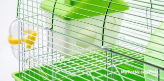 Hamster Cage Accessories