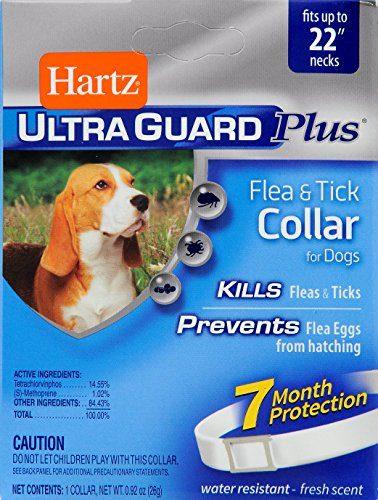 UltraGuard Collar for Dog by HARTZ