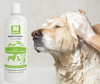 Oatmeal Dog Shampoo with Soothing Aloe by Nootie