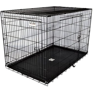 Two-Door Great Crate by Precision Pet