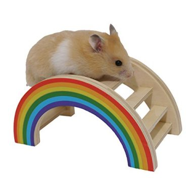 Rainbow Play Bridge by Rosewood Pet