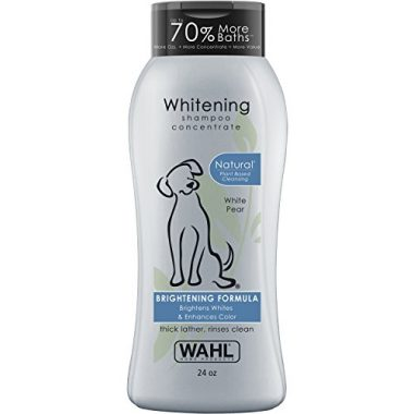 Color Bright Dog Shampoo by Wahl