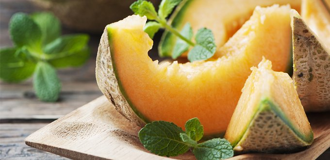 Can Dogs Eat Cantaloupe My Pet Needs That Alibaba.com offers you a plethora of premium frozen and preserved cantaloupe with all their nutrition intact. can dogs eat cantaloupe my pet needs