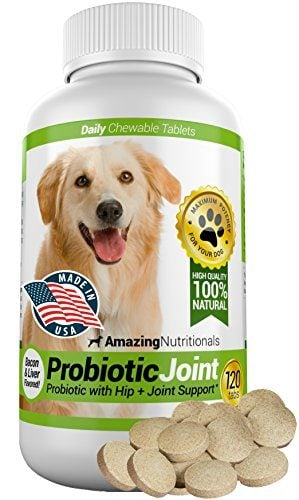 Probiotic with Hip and Joint Support for Dogs by Amazing Nutritionals