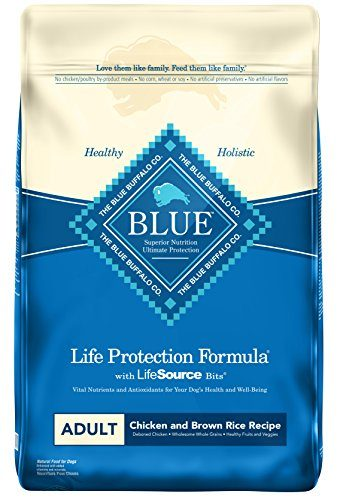 Blue Life Protection Formula Adult Dry Dog Food by Blue Buffalo