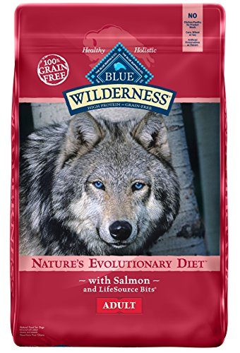 BLUE Wilderness Adult Grain-Free Salmon Dry Dog Food 24-lb