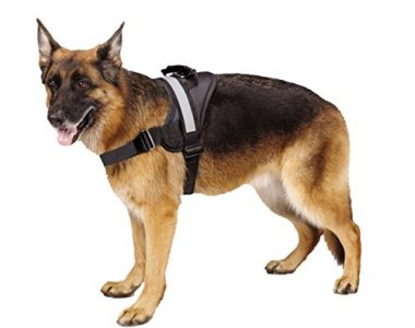 Big Dog Soft Reflective No Pull Harness by EXPAWLORER
