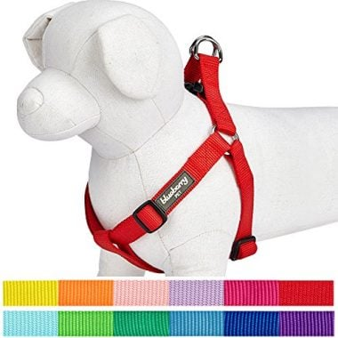 Classic Solid Color Adjustable Dog Harness by Blueberry Pet