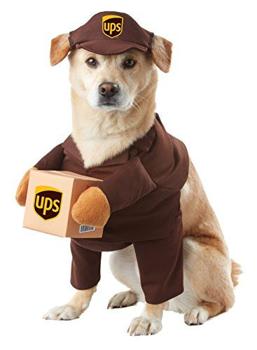 UPS Pal Pet Halloween Costume by California Costumes