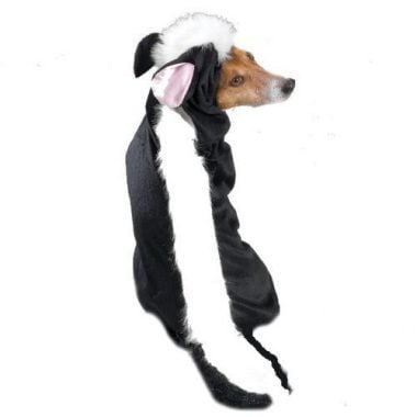 Lil' Stinker Skunk Dog Halloween Costume by Casual Canine