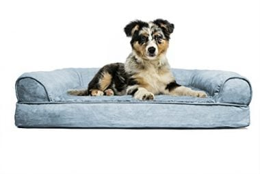 Orthopedic Dog Couch by Furhaven Pet