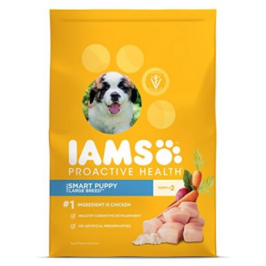 Proactive Health Puppy Dry Dog Food by IAMS