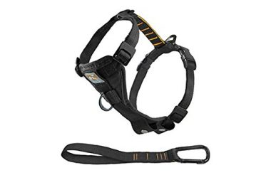 Tru-Fit No Pull Dog Harness by Kurgo
