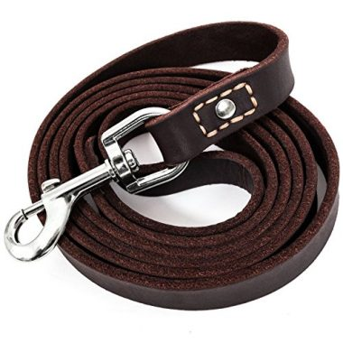 Leather Dog Training Leash by Leatherberg