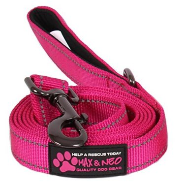 Reflective Nylon Dog Leash by Max and Neo Dog Gear