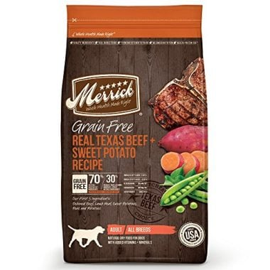 Best Lamb Grain Free Dog Food