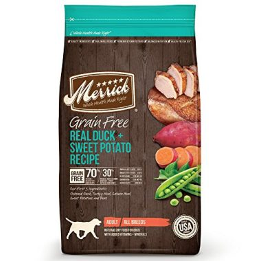 Grain Free Dry Dog Food by Merrick