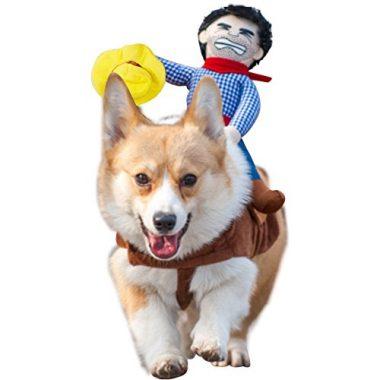 Cowboy Rider Dog Costume by NACOCO
