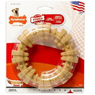 Dura Chew Ring Dog Toy by Nylabone