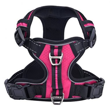 Best Front Range No Pull Dog Harness by PUPTECK