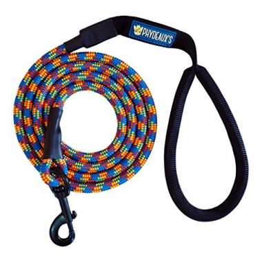 Mountain Climbing Rope Dog Leash by Phydeaux's Pet Supply
