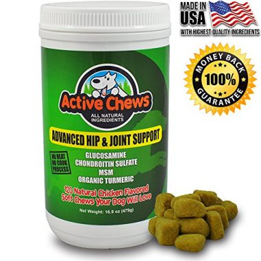 Premium Hip and Joint Dog Treats by Active Chews