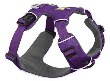 Front Range All-Day Adventure Harness for Dogs by Ruffwear