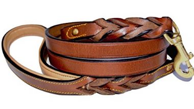 Leather Braided Dog Leash by Soft Touch Collars