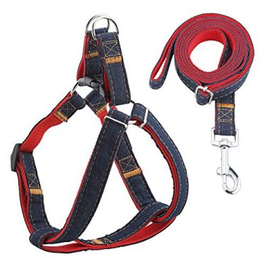 URPOWER Dog Leash Harness by URPOWER