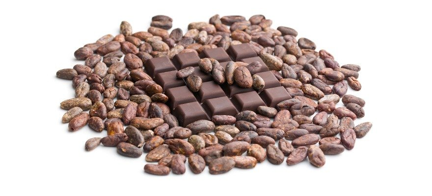 chocolates and cacao beans