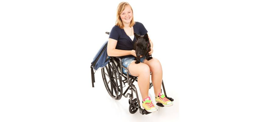 dog with person with disability