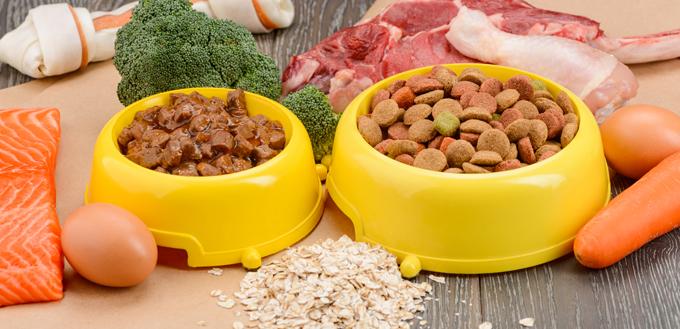 various dog food
