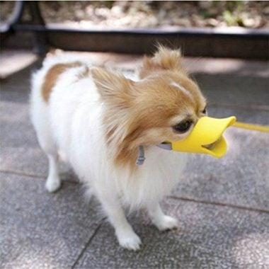 Anti-Bite Duck Mouth Shape Dog Mouth Covers by NACOCO