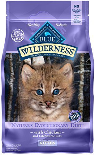BLUE Wilderness Kitten Grain Free Chicken Dry Cat Food