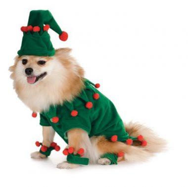 Elf Pet Costume by Rubie's Costume