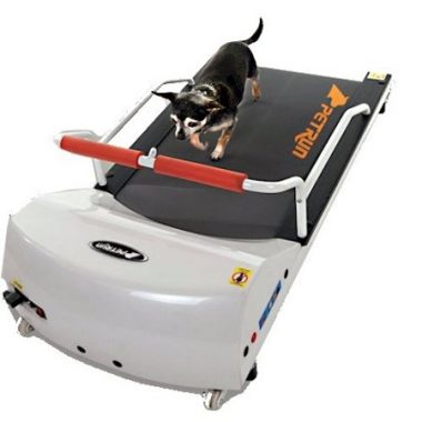 Petrun Pr700 Dog Treadmill Indoor Exercise / Fitness Kit by GoPet