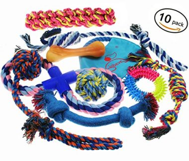 Dog Toys 10 Pack Gift Set by Lobeve