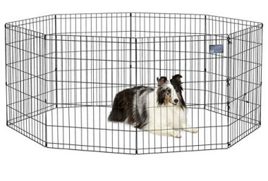 Foldable Metal Exercise Pen by MidWest Homes for Pets