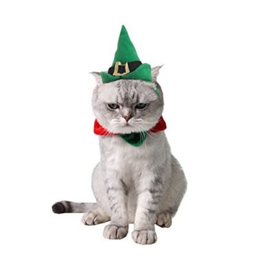 Cat Cosplay Peacock Costume by Namsan - Best Cat Christmas Costumes This Holiday Season