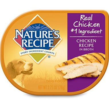 Chicken Recipe in Broth Wet Dog Food by Nature's Recipe