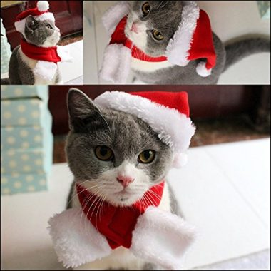 Cat Christmas Hat with Muffler Santa Hat by Pet Leso